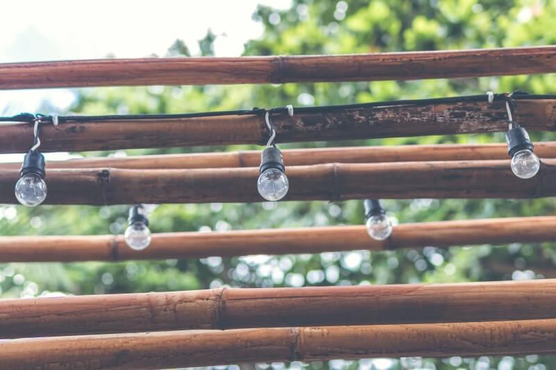 Wie Bambus dir helfen kann selbstbewusster zu werden